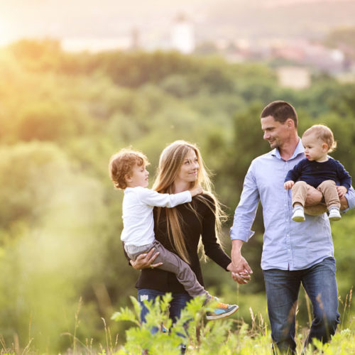 Transforming the family law system